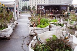Community gardeners grow a variety of flowers, herbs and shrubs. Photo Courtesy of Prazelenina.CZ Blog.